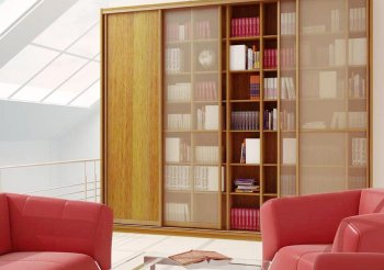 Шкаф купе для книг со стеклом