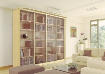 Книжный шкаф купе со стеклянными дверцами