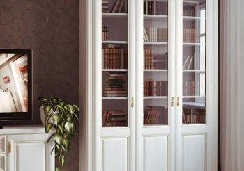 Книжный шкаф двери купе