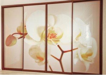 Шкаф купе в спальню с орхидеями