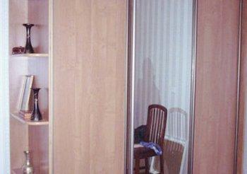 Шкаф купе 1 дверь зеркало