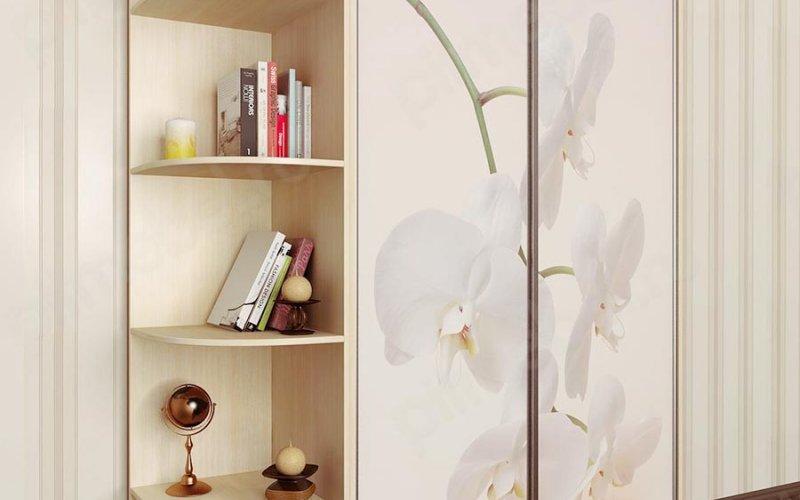 Фотопечать на шкаф купе 2 двери каталог