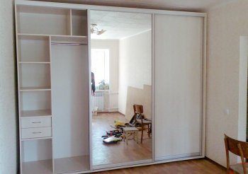 Дверь купе зеркало