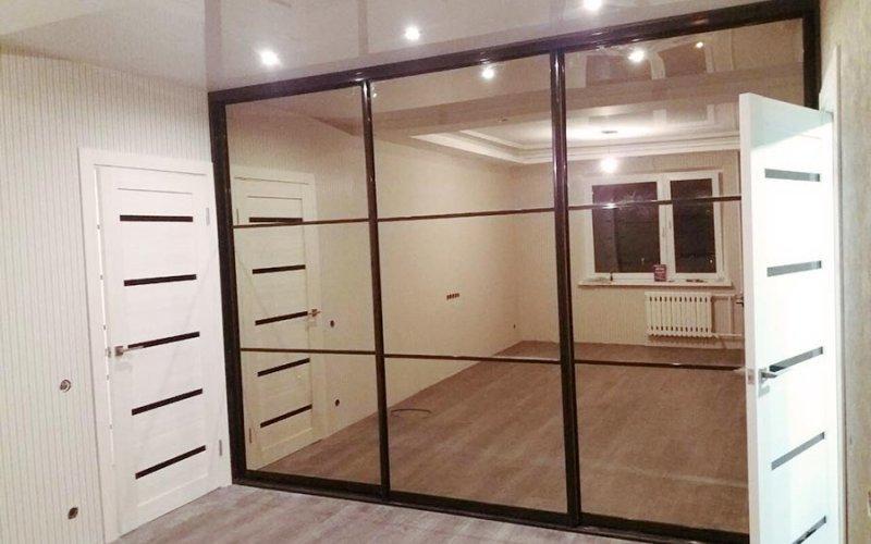 Зеркальные двери купе с разделителями