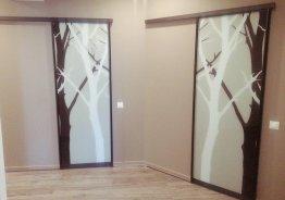 Раздвижные межкомнатные двери с фотопечатью