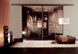 Двери шкафа стекло