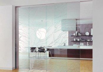 Прозрачные перегородки двери