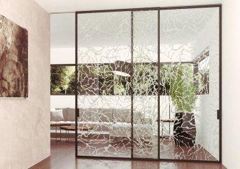 Навесные раздвижные стеклянные двери
